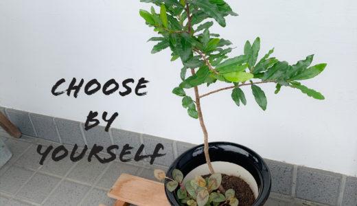 今すぐ取り入れられるストレスを減らす考え方『世界は自分中心で構わない』