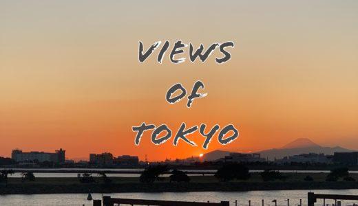 東京も捨てたもんじゃない|葛西臨海公園で身も心もリフレッシュできました。