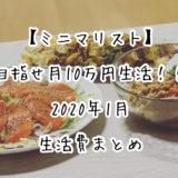 【ミニマリスト】目指せ月10万円生活!!2020年1月の生活費まとめ