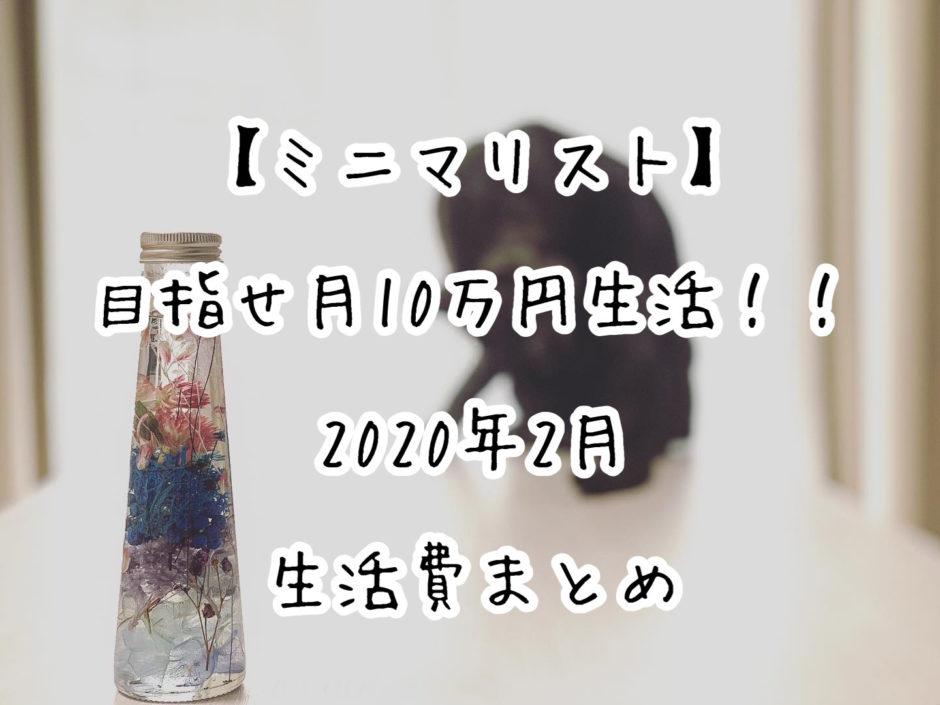 【ミニマリスト】目指せ月10万円生活!!2020年2月の生活費まとめ