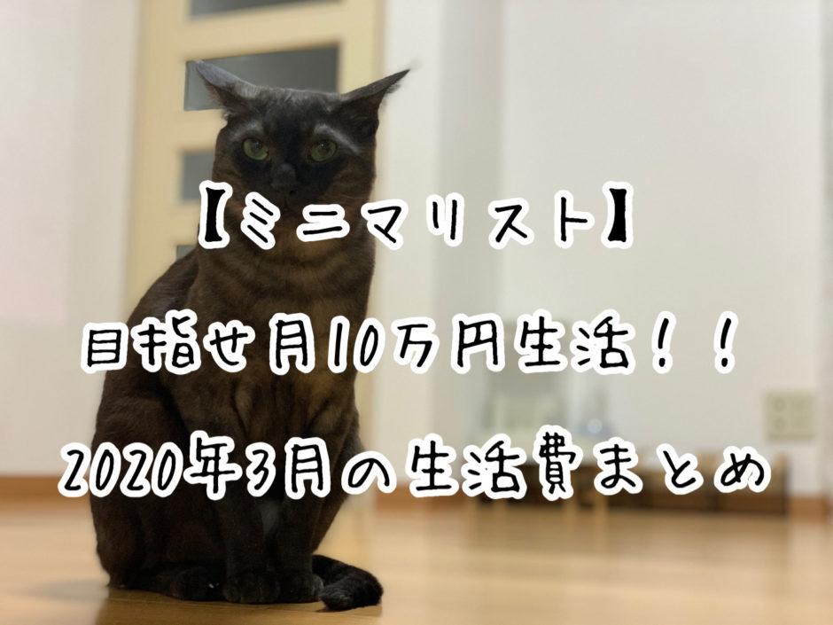 【ミニマリスト】目指せ月10万円生活!!2020年3月の生活費まとめ