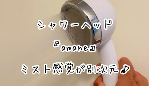 本物の超極細シャワーは違う!!シャワーヘッド「amane」の0.19mmミスト感覚が別次元すぎてオススメ