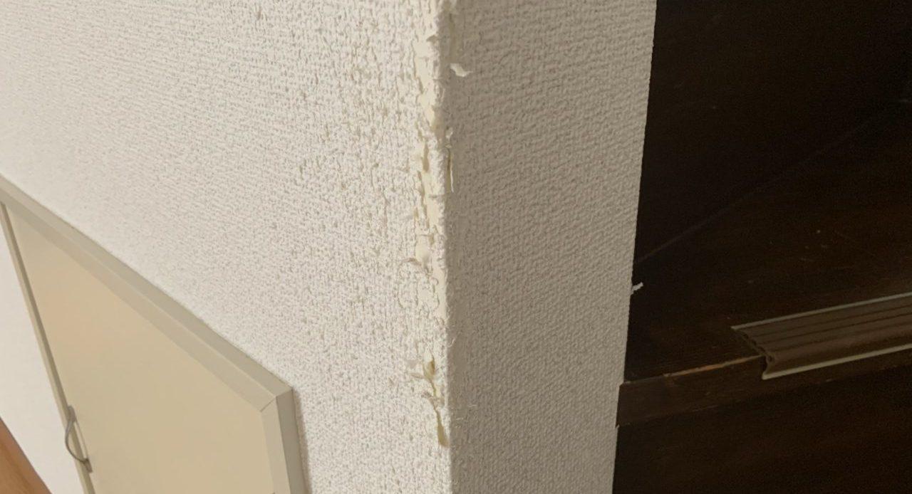 壁や家具がボロボロにされる