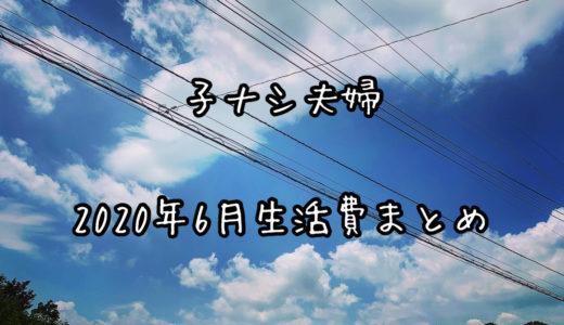 【子ナシ夫婦】2020年6月の生活費まとめ