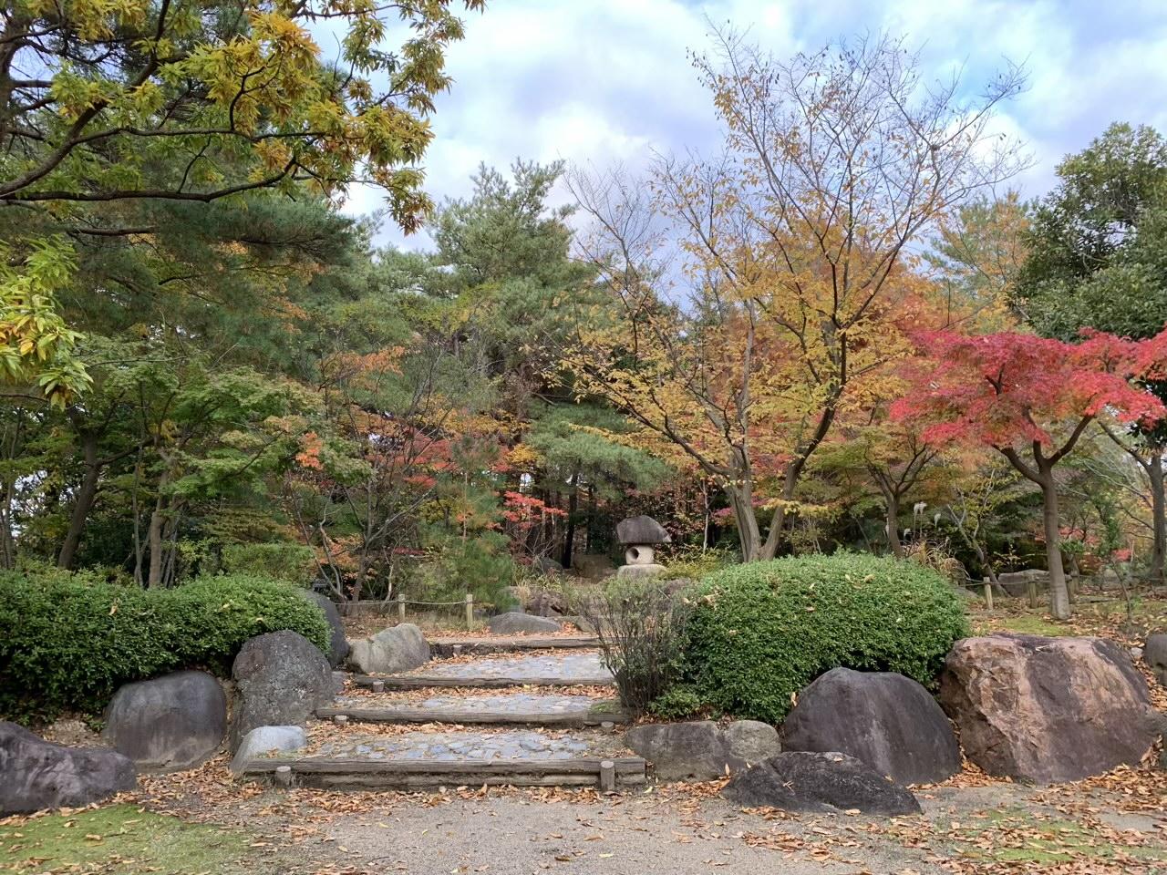 まとめ:新潟県立鳥屋野潟公園は秋の魅力が満載!