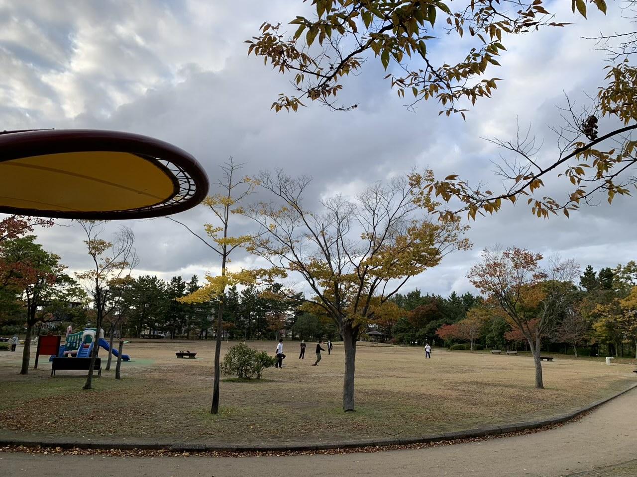 新潟県立鳥屋野潟公園|鐘木地区の雰囲気とは?