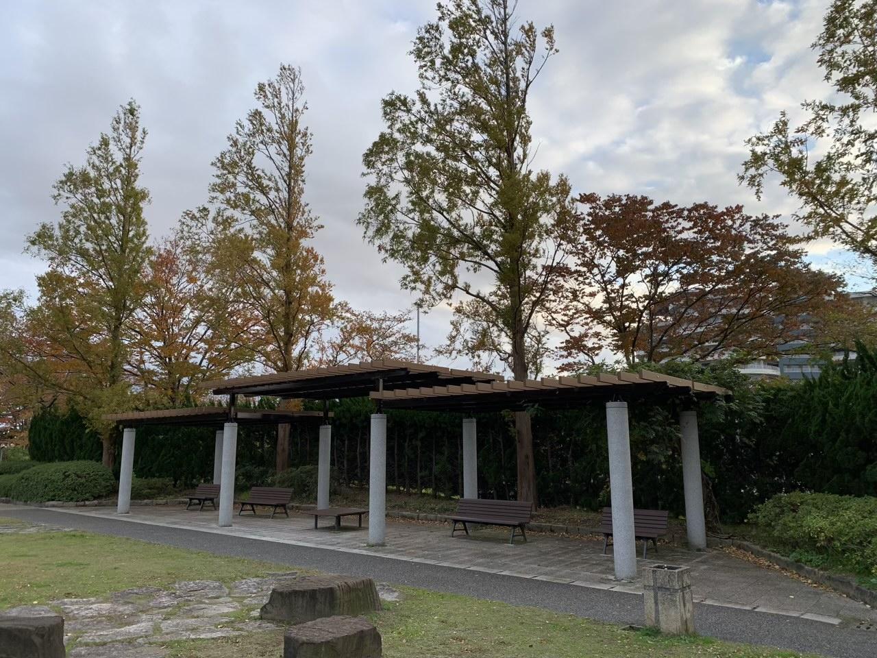 新潟県立鳥屋野潟公園|鐘木地区 ベンチ