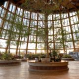 【新潟】いくとぴあ食花|食育・花育センターを観光してみた!雰囲気や見どころについて